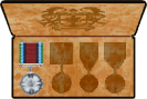 Awards of PVE Merit